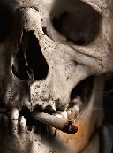 مواد مخدر؛ تهدیدی بزرگ برای بشریّت