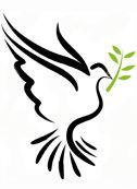 رابطه اسلام با صلح و جنگ