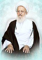 نکته بسیار مهم زندگی حضرت آیت الله العظمی مکارم در بیان دکتر مسعود مکارم