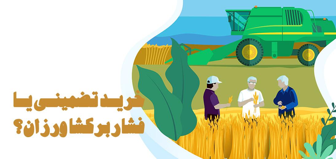 خرید تضمینی یا فشار بر کشاورزان؟