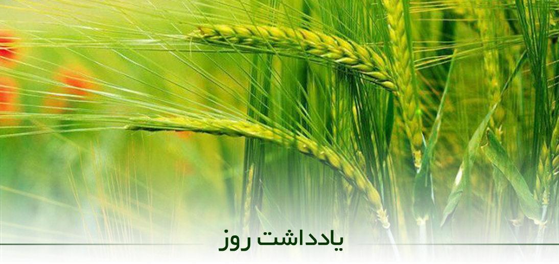 راهکارهای «جهش تولید» در بخش کشاورزی از منظر آیت الله العظمی مکارم شیرازی