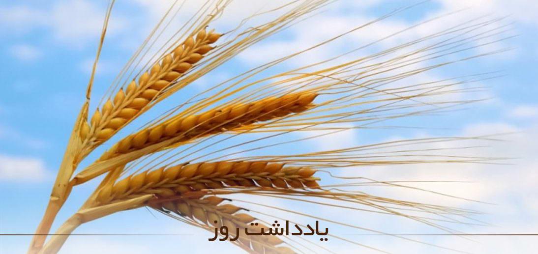 اهمیت پرداخت زکات فطره از منظر آیت الله العظمی مکارم شیرازی(مدظله)
