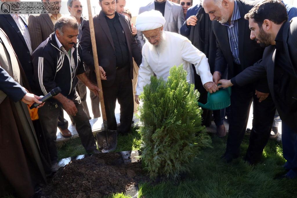 Atətullah Məkarim Şirazi ağacəkmə -09