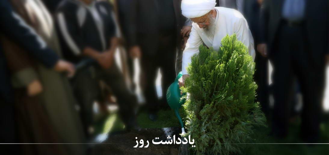 درخت و درختکاری در آموزه های اسلامی از منظر معظم له
