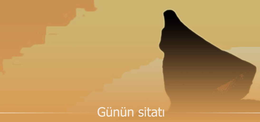 """Ayətullah əl-uzma Məkarim Şirazinin nəzərində """"hicab"""" və """"iffət"""" anlayışı"""